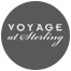 Voyage Demeter Medium Vase - Gold